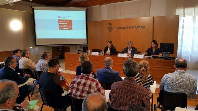 La Generalitat I La Diputació De Tarragona Promouen La Creació Del Parc Natural