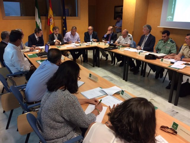 Reunió del Comité Asesor del Plan Infoca en Sevilla
