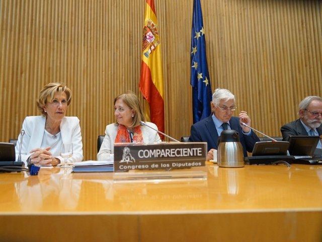 La secretaria de Estado de Comercio, Marisa Poncela