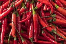 El chile rojo puede ayudar a tratar la obesidad