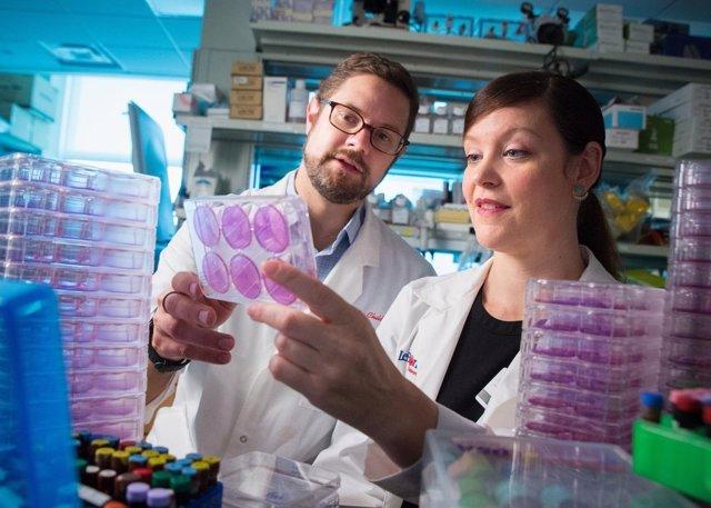 Usan un fármaco antitumoral para combatir la gripe