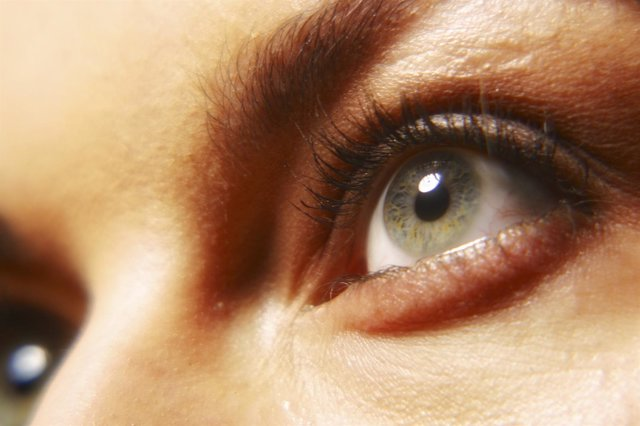Ojos, retina
