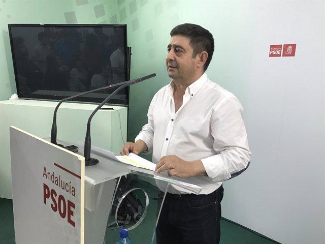 Francisco Reyes analiza las primarias del PSOE (Archivo)