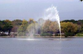 La OMT se suma a la Carrera del Medio Ambiente que recorrerá el 4 de junio la Casa de Campo de Madrid