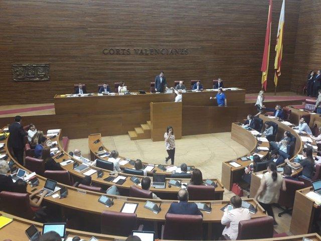 Votación del director de la Agencia Valenciana Antifraude