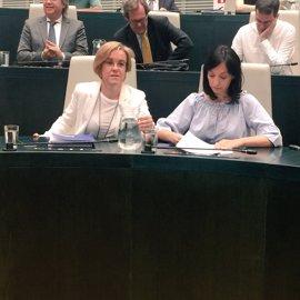 """PSOE critica los """"tímidos avances"""" de Ahora Madrid, sin """"hoja de ruta"""", y critica su visión en Urbanismo y Cultura"""