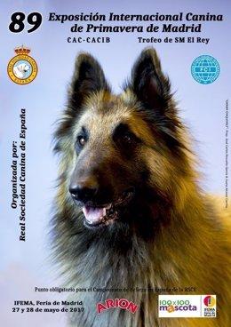 La 89 Exposición Internacional Canina de Primavera