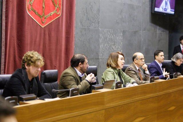Pleno del Parlamento de Navarra