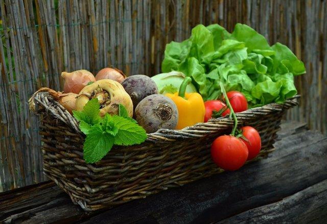 Expertos recomiendan alimentación saludable metabólicos equilibrada, accesible