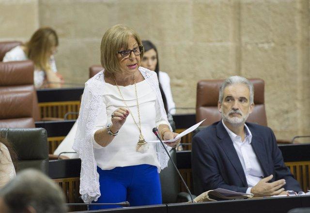 La consejera andaluza de Educación, Adelaida de la Calle, en el Parlamento
