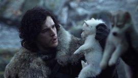 Juego de tronos: Muere Fantasma (Ghost) el lobo huargo de Jon Snow