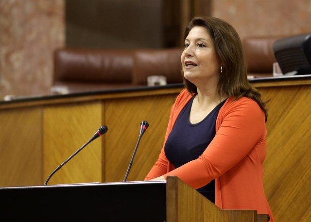 La portavoz parlamentaria del PP-A, Carmen Crespo, ante el Pleno de la Cámara