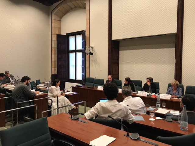 Comisión de Acción Exterior del Parlament