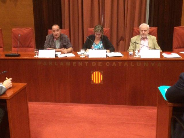 David Fernàndez (CUP) en la comisión de investigación de la operación Catalunya