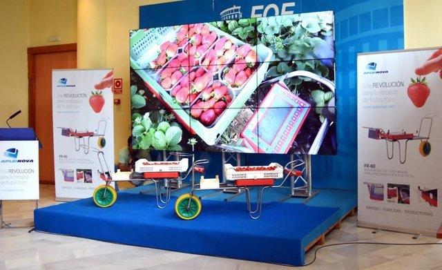 Apleinova presenta un nuevo sistema de recogida de fresas.