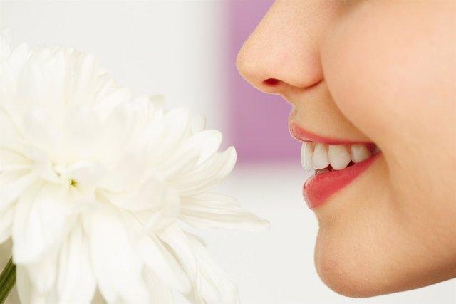 Olfato, oler, sonrisa, perfil, nariz, flor, oliendo