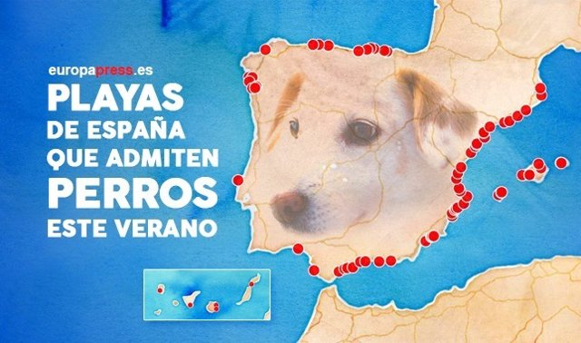 Playas para perros verano 2017