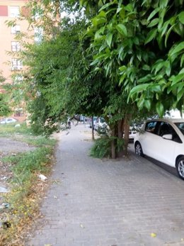 PP critica falta de poda, deterioro y suciedad en el barrio de Cerro- Amate