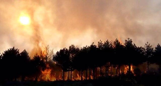 Incendio en Grandas de Salime.