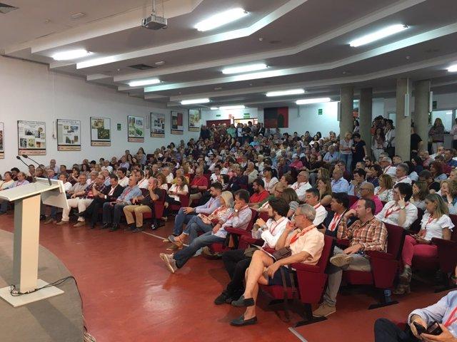 El plenario ha congregado a los delegados de las agrupaciones locales