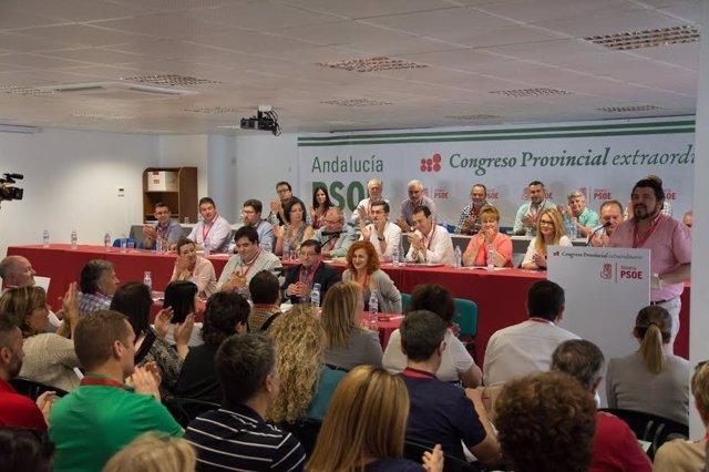 Una de las intervenciones en el Congreso Extraordinario Provincial en Fiñana