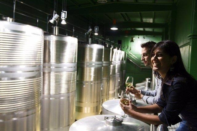 La cita dará a conocer los negocios turísticos alrededor del vino