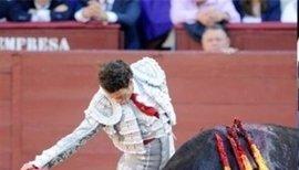 """Fundación Toro de Lidia destaca el fraude legal en la propuesta de 'toros a la balear', que """"mutila aspectos esenciales"""""""