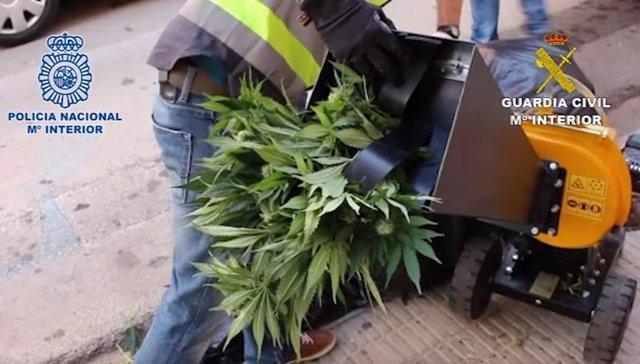 Operación contra el tráfico de drogas