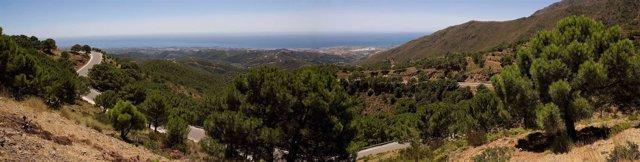 Vista de un tramo de una carretera de Málaga