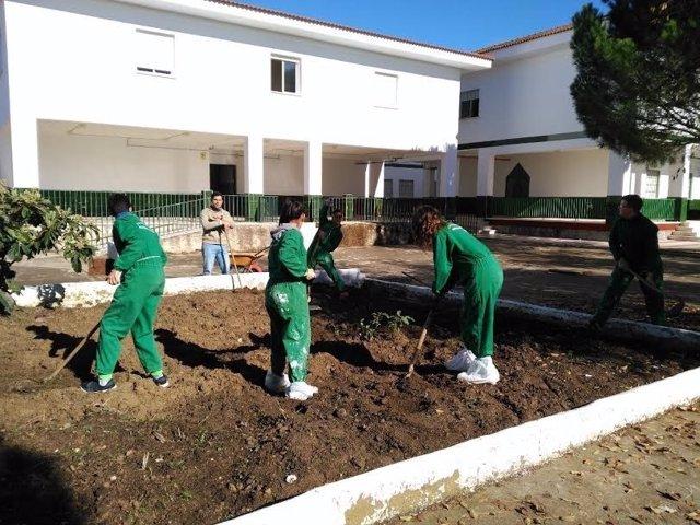329 Proyectos Grupales De La Diputación De Huelva.