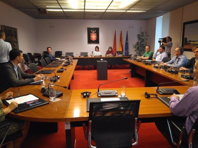 Comisión de investigación del Parlamento foral sobre la planta de Ultzama