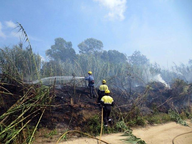 Extinción de un Incendio forestal en Blanes