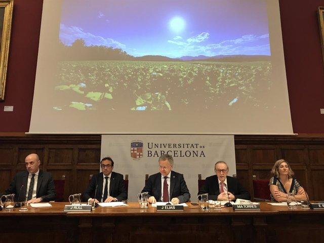 T.Molina, J.Rull, J.Elías, M.A.Torres y E.Rius