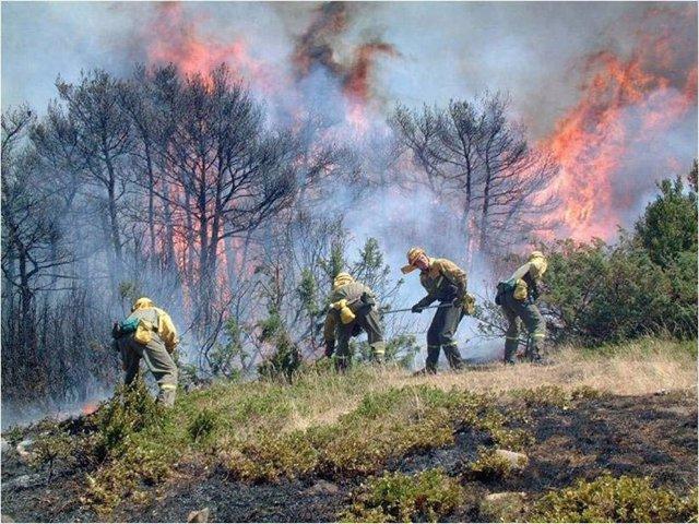 Bomberos De La ANE Durante La Extinción De Un Incendio.