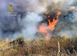 Investigan a un anciano por calcinar 4.000 m2 en el Parque Natural de Cabo Tiñoso al no extinguir una hoguera