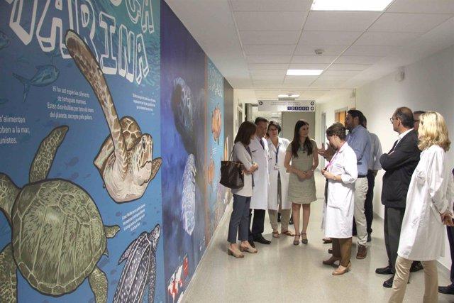 La Fe de València abre la calle de L'Oceanogràfic