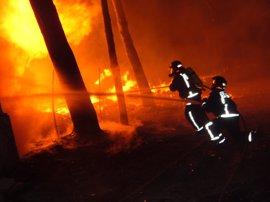Más de 500 personas al día se encargarán de prevenir incendios forestales y por 1ª vez se incorporará Protección Civil