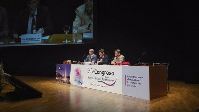Villegas inaugura el XIV Congreso Nacional de la Sociedad Española del Dolor
