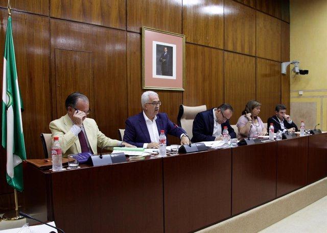 Jiménez Barrios durante la comisión de Presidencia y Administración Local
