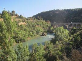 La CHE adjudica el contrato de servicios para el control ecológico de los ríos