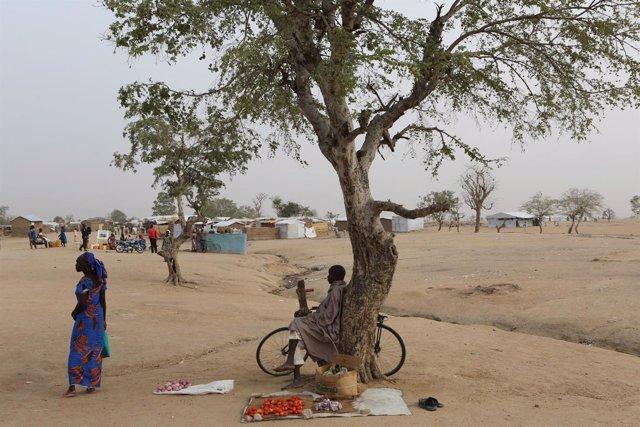 Refugiados nigerianos en el campo de Minawao (Camerún)