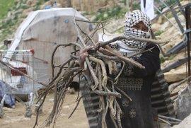 """Alianza por la Solidaridad denuncia el """"invisible"""" sufrimiento de las mujeres palestinas por la ocupación"""