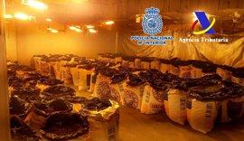 Un detenido en Gijón por formar parte de una red que introducía cocaína en España impregnada en equipajes