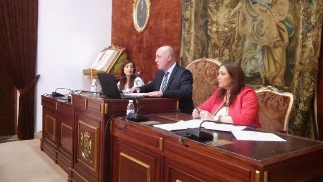 Antonio Ruiz preside el Pleno extraordinario