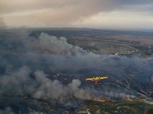 Una avioneta de extinción de incendios