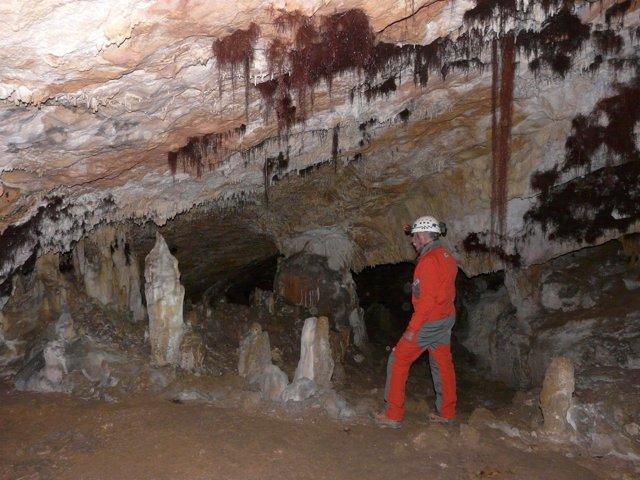 Visita a la cueva de Atapuerca
