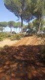 Foto: Lora del Río (Sevilla) inicia la construcción de un parque de aventuras en el monte público de la Matallana