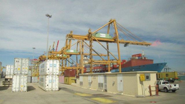 Grúas en el Puerto de Valencia