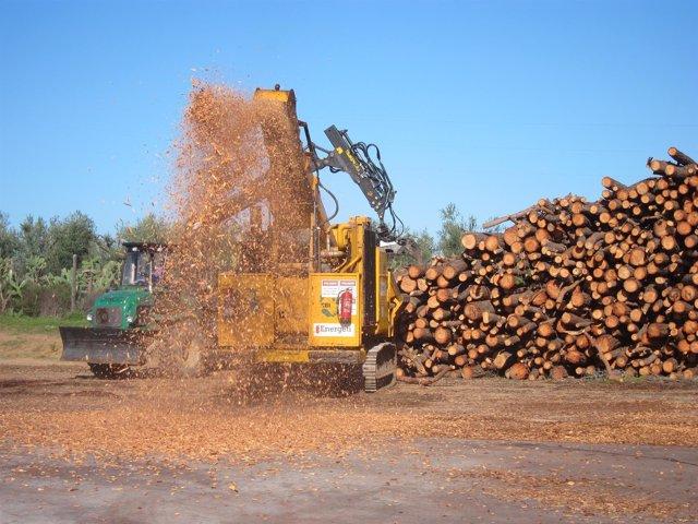 Producción de biocombustible sólido para calderas de biomasa.
