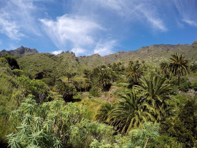 Parque Rural de Anaga